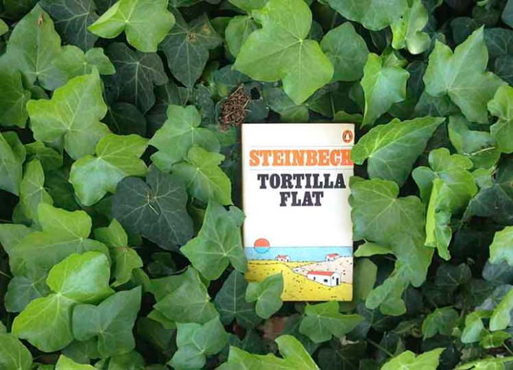 tortilla-flat-on-ivy-772x585-IMG-3174
